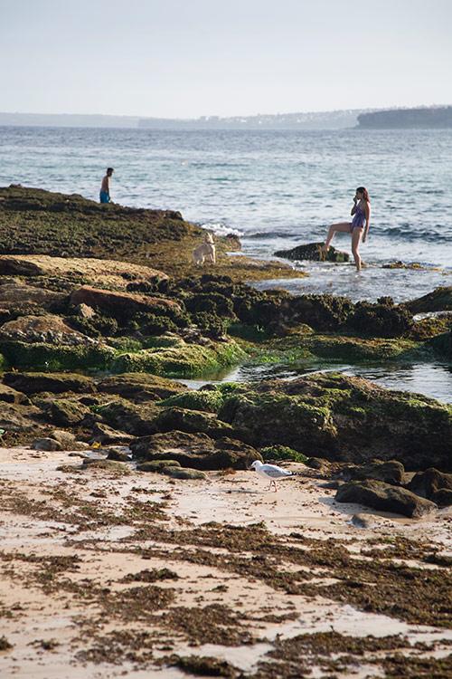 Frau und Hund am Bondi Beach