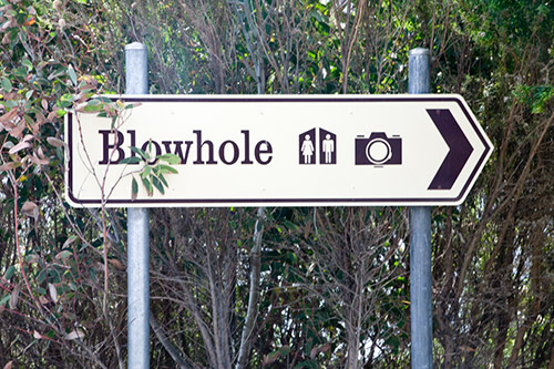 Schild: Blowhole, Toilette und Picture-Point