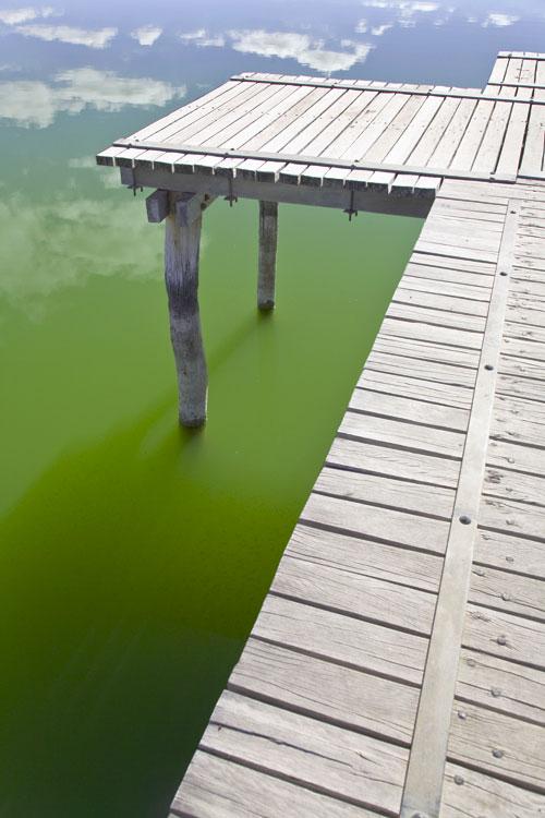 Steg zum Lake Bonney mit Wasser